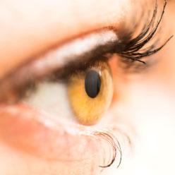 Augenarztpraxis Horgen